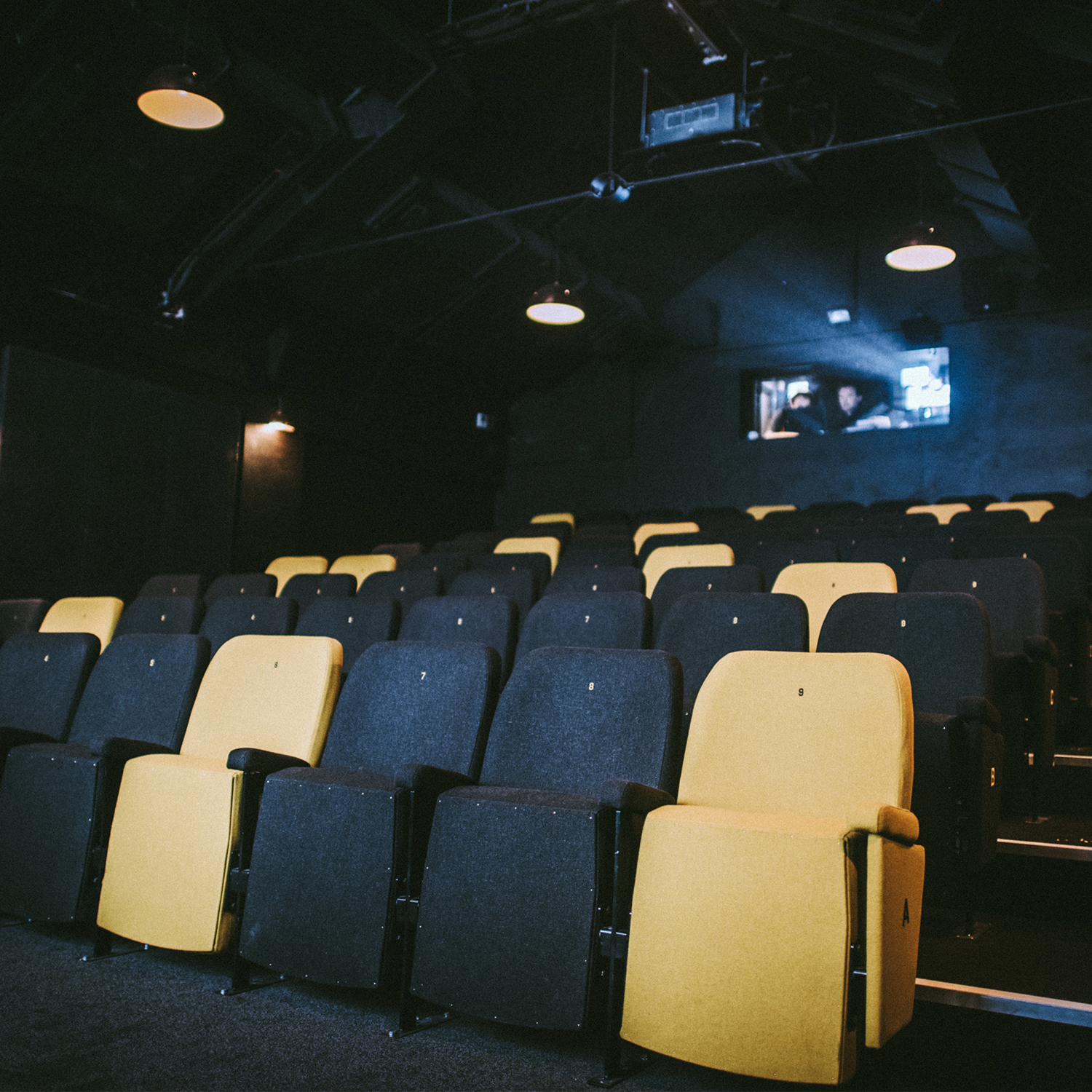 Rows of cinema seats.