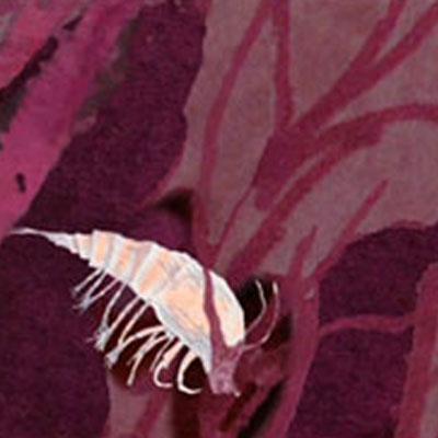 A still from an animation created by Edwina Ashton.